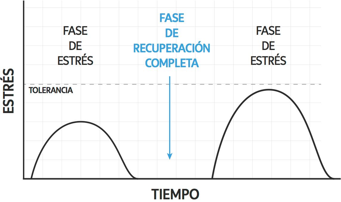 grafica